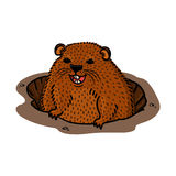 Groundhog day illustration Stock Image