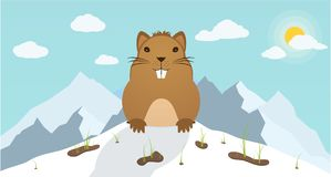 Groundhog Day. Marmot climbed out of hole on background mountains. Stock Images