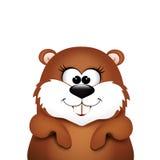 Groundhog day. Marmot on white background. Royalty Free Stock Photography