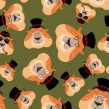Groundhog day patern. Groundhog in hat. Woodchuck background. Or. Nament face Marmot. Vector illustration Royalty Free Stock Images