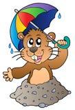 Groundhog de dessin animé avec le parapluie Photos libres de droits