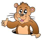 Groundhog del fumetto che si apposta dal foro Fotografie Stock