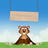 Groundhog in the den. Illustration of Groundhog in the den Royalty Free Stock Photos