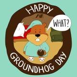 Groundhog em seu furo que pede que Fotos de Stock Royalty Free