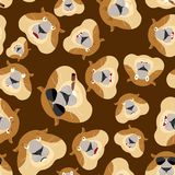 Groundhog head pattern. Woodchuck background. Ornament face Marm Stock Photo