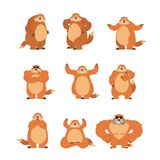 Groundhog set poses and motion. Woodchuck happy and yoga. Marmot. Sleeping and angry. guilty and sad. Groundhog day Vector illustration Royalty Free Stock Photo