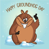 Groundhog vector illustration. Can be used in web design, printed on fabric paper, as a background, or as an element in a composi Royalty Free Stock Photos
