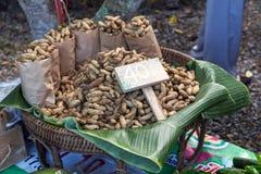 groundnut Стоковое Фото