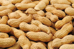 Groundnut background Royalty Free Stock Images