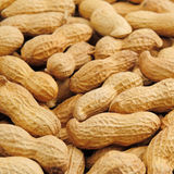 Groundnut background Royalty Free Stock Photos