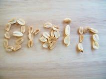 groundnut lub arachid Obraz Royalty Free
