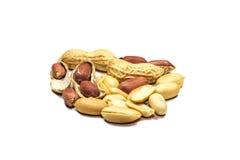 Groundnut Stock Image