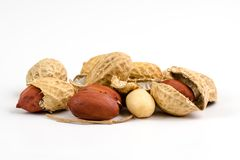 Groundnut Royalty Free Stock Photo