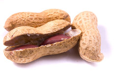 Groundnut seeds Royalty Free Stock Image