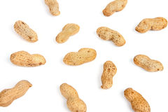 Groundnuts Stock Image