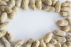 groundnuts Obrazy Stock