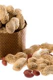 Groundnuts Isolated Royalty Free Stock Photos