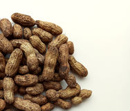 Groundnuts Stock Photography
