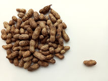 Groundnuts Royalty Free Stock Photography