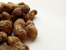 Groundnuts Stock Photo