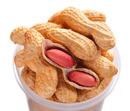 Groundnuts, peanuts Royalty Free Stock Images