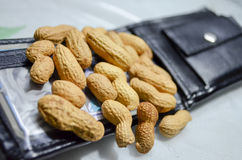 Underpaid employee worker conept. Peanut or groundnuts on wallet showing concept of meager income or underpaid employee Stock Image