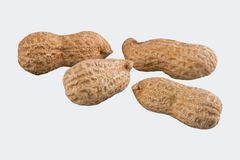 Groundnuts on a white background Stock Photo