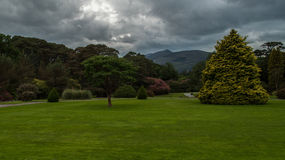 Grounds at Muckross House. The many shades of green that can be seen in Ireland are on fine display on the grounds of Muckross House, just outside of Killarney Stock Photography