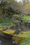 Grounds of St. Fagans Castle March 2017. A small stream running through the grounds of St. Fagans Castle, an Elizabethan manor house near Cardiff, Wales, taken Stock Photo
