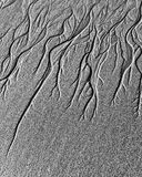 Groundwater channels on sand. Braided channels caused by groundwater emergence on sand as the tide goes out stock photography