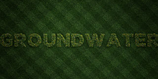 GROUNDWATER - fresh Grass letters with flowers and dandelions - 3D rendered royalty free stock image Stock Photo
