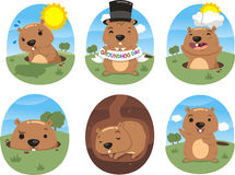Grounhog action set Stock Photography