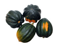 A group of acorn squash Royalty Free Stock Photos