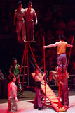 A group of acrobats performing in a circus Stock Photography