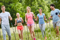 Group of active people nordic walking. As training in the nature Royalty Free Stock Photo