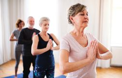 Group of senior people doing exercise in community center club. royalty free stock image