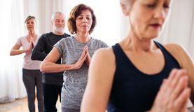 Group of senior people doing yoga exercise in community center club. royalty free stock photo
