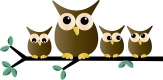 A group of adorable owls sitting on a branch Royalty Free Stock Photo