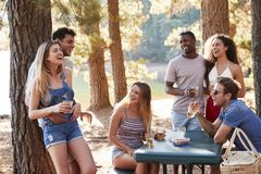 Group of adult friends hanging out by a lake, close up royalty free stock photo