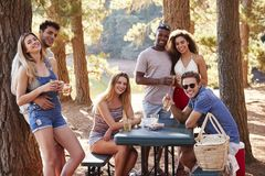 Group of adult friends by a lake smiling to camera, close up royalty free stock photography