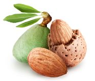 Group of almond nuts. Stock Images