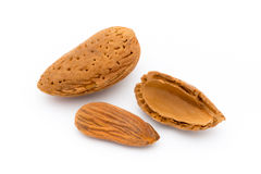 Group of almond nuts. Isolated on a white background. Royalty Free Stock Photos