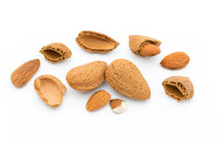 Group of almond nuts. Isolated on a white background. Royalty Free Stock Images