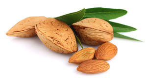 Group of almond nuts with leaves Stock Photo
