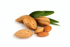 Group of almond nuts with leaves Royalty Free Stock Image