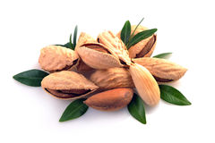 Group of almond nuts Royalty Free Stock Images