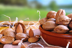 Group of almonds on a table in the field front view Stock Images