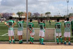 A group of amateur young soccer players are watching a interesting match. A group of amateur young soccer players are watching and are wearing green and white royalty free stock photography