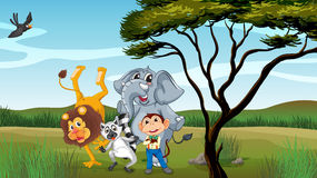Group of animals. Illustration of a group of animals near a tree Royalty Free Stock Photos