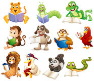 A group of animals reading. Illustration of a group of animals reading on a white background Royalty Free Stock Photography